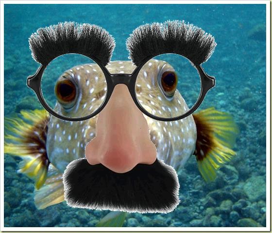 Pesce Groucho
